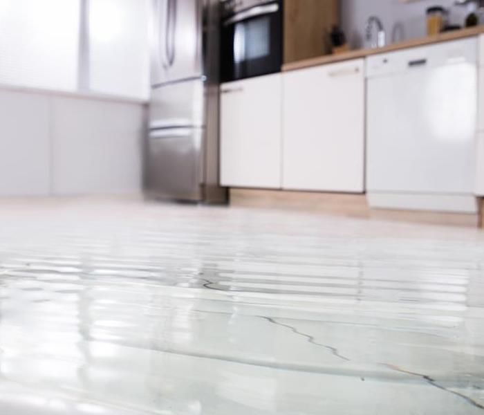 Water Damage How SERVPRO Determines the Water Cleanup Processes for Your Century City Home