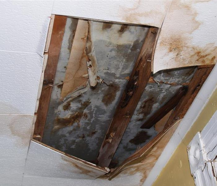 Mold Remediation Mold In Office HVAC