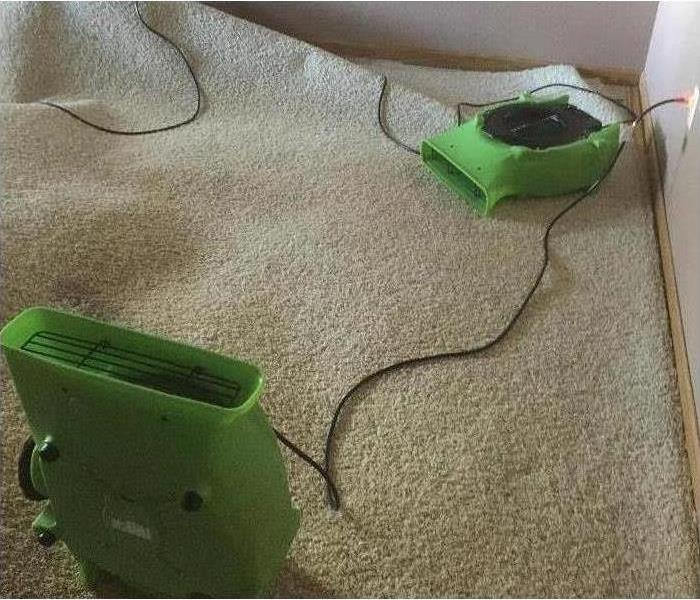 Air movers on carpet