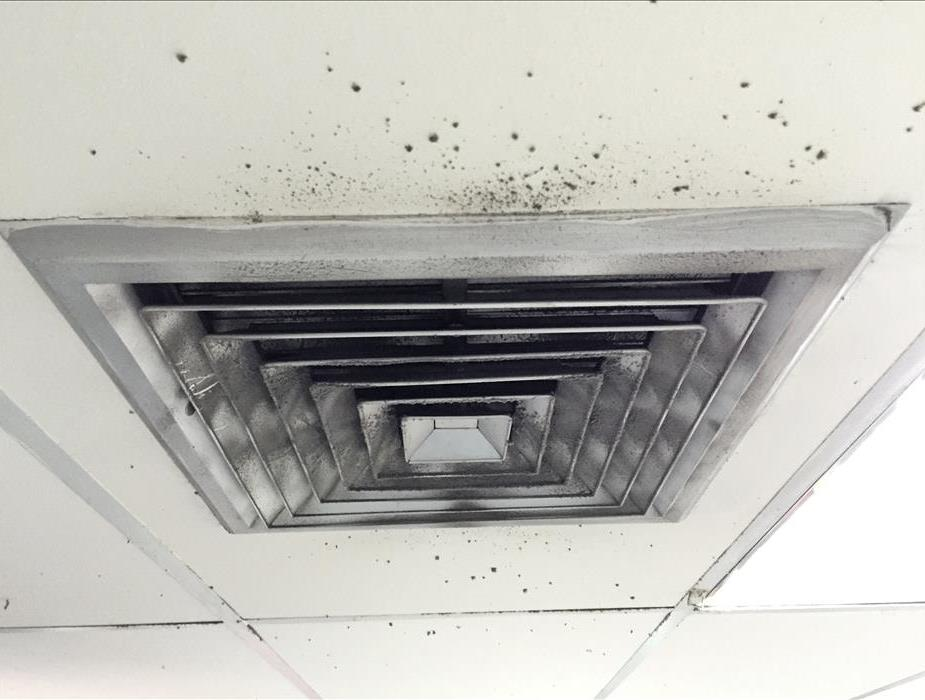Air duct with mold
