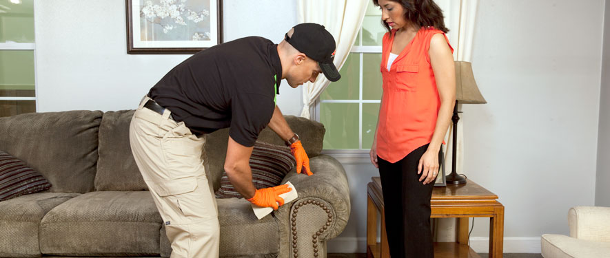 Beverly Hills, CA carpet upholstery cleaning